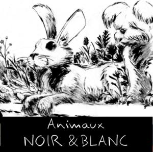 Dessins sur le thème des animaux, en noir et blanc.