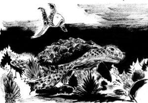 Autre version d'un dessin à l'encre de chine d'une petite tortue de mer et qui nage au millieu d'eaux sales.