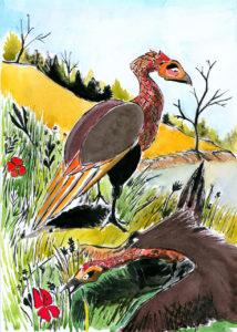 Deux grands oiseaux, dessin à l'encre de chine et aquarelle.