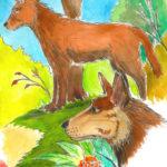 Lobos, étude de carnet