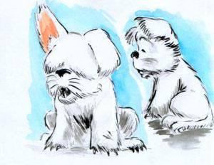 Dessin d'une petite chienne en blanc.